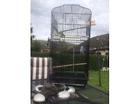 Big budgie cage £30