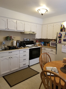 Beautiful Large Bright 2 Bedroom Ground Level Suite Avail Feb 1