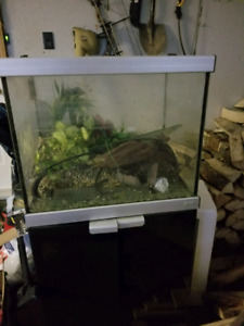 FISH TANK AND STAND READY FOR FISH