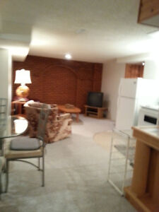 2 Bedroom Furnished Basement Suite in St. Albert