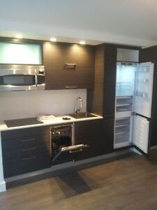 Downtown, condo for rent, 1390 Du Fort corner of St. Catherine