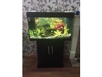 Juwel 125L Tropical Fish Tank