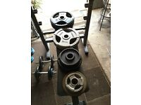 Body max bench and weights