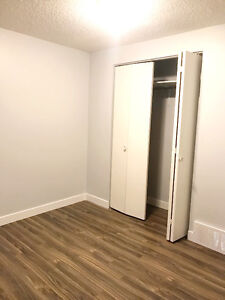 A new renovated basement bedroom for rent, Move in available NOW