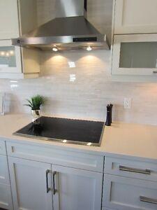 Handyman/Home Improvements Edmonton Edmonton Area image 2