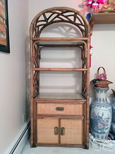 Cabinet Bookcase Display