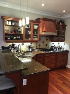 Kitchen Cabinets, Countertops, and Appliances