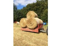 Excellent Quality Hay, suitable for Horses