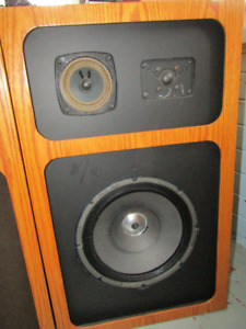 CUSTOM VINTAGE SPEAKERS