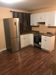 SPACIOUS NEWLY FINISHED 2 BEDROOM APT