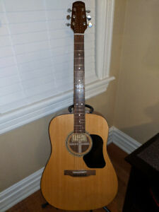 Walden D310W guitar and case