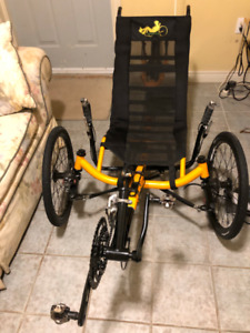 TW-Bents 27 Speed Artifice Recumbent Bike - Three wheel