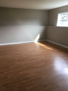1-3 bedroom above ground basement suite for rent near UBCO