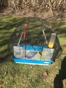 Cage for bird