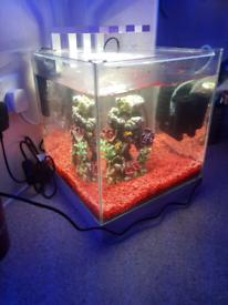 Nano cube tank 25l full set up