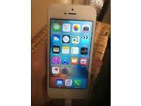 Iphone 5 white 16gb 02