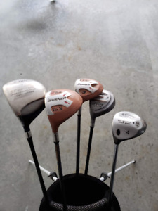 Two Drivers, two 3 woods, and one 4 wood.  Alien carry bag.