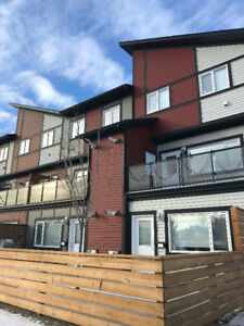 Evergreen condo suite available immediately