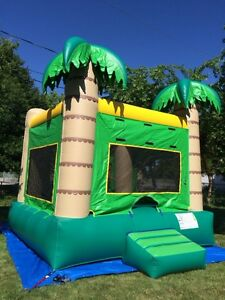 Bouncy Castle Rental!  Hallmark Party Rentals Windsor Region Ontario image 2