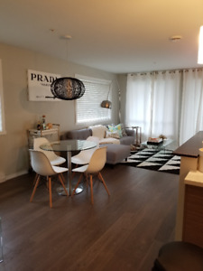 Female Roommate wanted in beautiful new 4 1/2