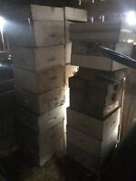 Older style bee boxes