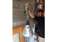 Heat radiator for animals