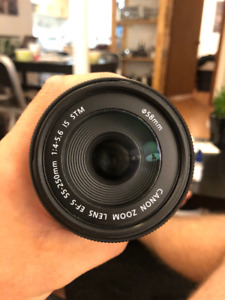 Canon Zoom Lens EF-S 55-250mm f/4-5.6 IS STM