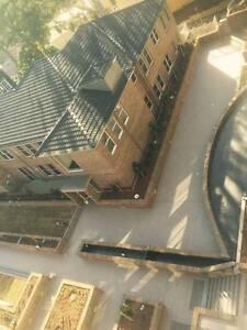Zhiyun Tiling Service Sydney Region Preview