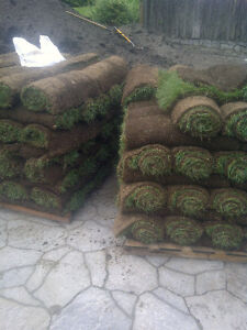 NEED A NEW LAWN?!?!? Best price on Sod installation in the area! Cambridge Kitchener Area image 1