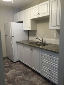 FULLY renovated 2 bedroom--AUGUST IS FREE!!