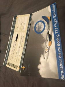 Simulateur de vol  / Flight simulator