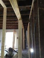 Home Improvement Expert
