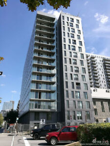 Downtown Condo Rent