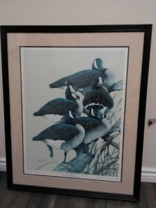 Gander Mountain Framed Print