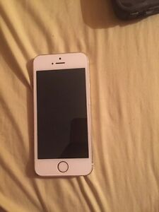 iPhone 5s Gold (Fido)