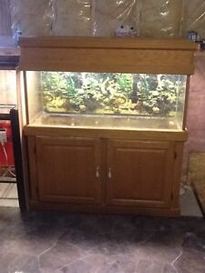 Fish tank 70 gallon with stand SOLD