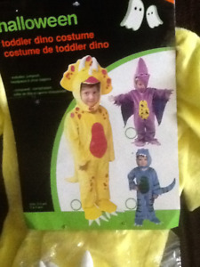 Dion costumes