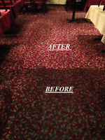 Carpet & Upholstery Cleaning, Professional, Certified Technician