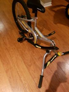 Bike extension