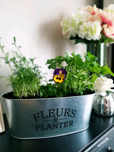 Herb Planters - Perfect for Mothers Day!