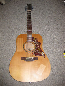 Norman B20 12 String Acoustic w/ case