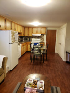 Bright and spacious basement apartment for rent in WHITBY