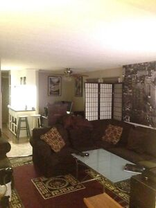 Affordable room in near Emerald Hills