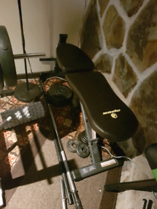 Apex Adjustable Weight Bench $50
