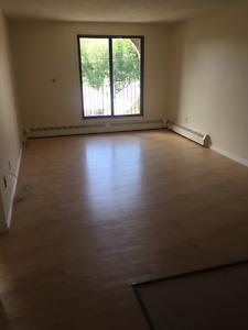 Large 1 Bedroom Plus Den For RENT
