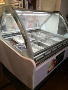 Commercial icecream freezer for sale