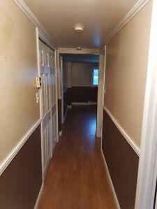 2 bedroom basement apt. Mount Pearl