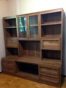 Wall Unit / Cabinet