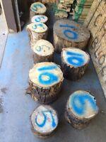 Firewood fire wood chop n blocks or cheap logs