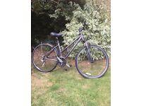 Ladies Trek mountain bike